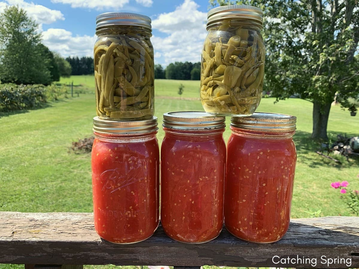 4 Awesome Ways to Preserve Vegetables and Fruit From Your Garden