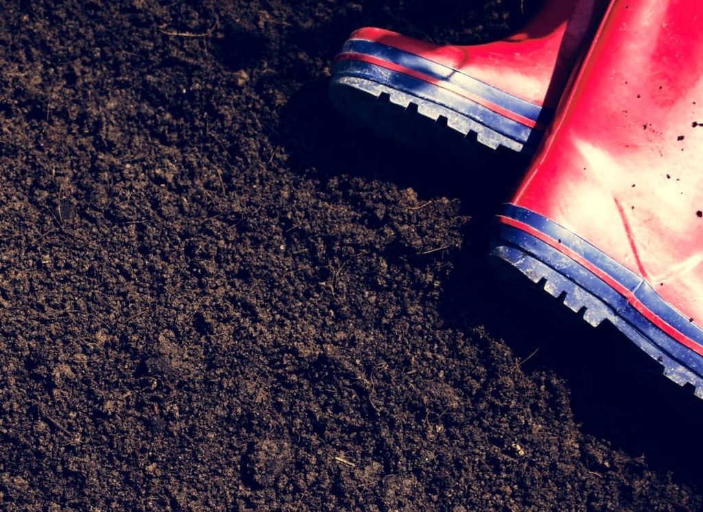 fall garden prep essential things you DON'T want to do and why forgetting your soil quality