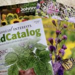10 very best garden catalogs that every gardener needs