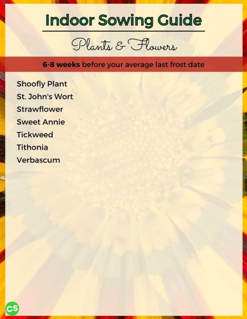 When to Sow Seeds Indoors - Complete Chart to Over 100 Beautiful Flowers sow 6-8 weeks before cont.