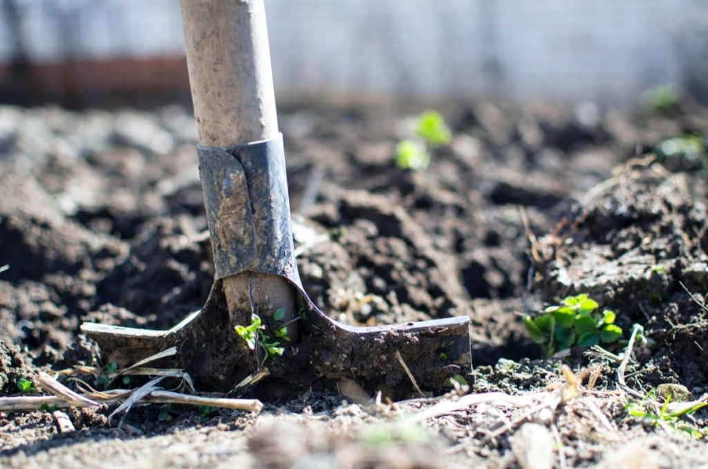Common Garden Mistakes to Avoid in Spring working when the ground is too wet